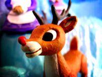 Rudolph-Flickr-jamieanne
